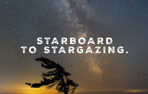 BlueFoot Travel Jog Starboard to Stargazine Featured
