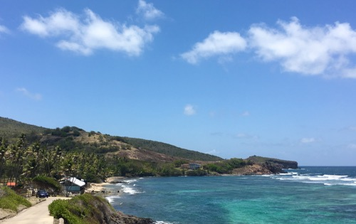 A view of the Bequia Turtle Sanctuary that has saved 933 turtles to date, thanks to the hard work of Mr King!