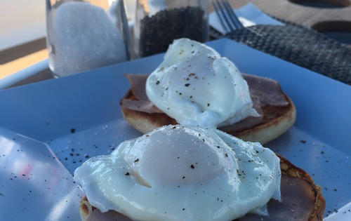 Yummy poached eggs on ham and English muffins for Breakfast on Nemo.