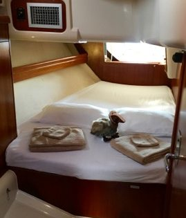 The aft Pelican cabin on board BlueFoot Travel's Nemo